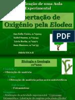 7342_apresentacao