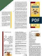 TRIPTICO COMIDA LIBERTEÑA.pdf