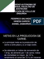 MANEJO DE POLLOS DE ENGORDA.ppt