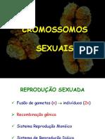 Cap 5 Cromossomos Sexuais(1)