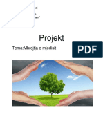 Projekt Mbrojtja e Mjedisit