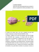 A Incrível Conexão Cérebro