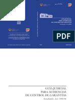 Audi Penales.pdf