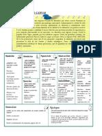 222871537-Ejemplo-Modelo-Canvas.pdf