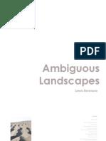 Ambiguous Landscapes