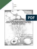 LA_VIDA_EN_LA_MUERTE_RESISTENCIAS_E_INCA.pdf