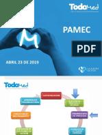 PAMEC ABRIL 23 DE 2019.ppt
