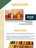 INDUCCIÓN.pptx