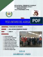 PESO-UNITARIO-fino.docx