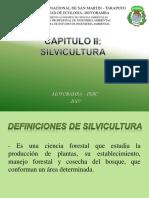 CAPITULO  II - Silvicultura OK.pptx