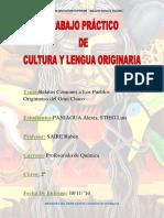 Trabajo-de-Cultura-Paniagua-Stieg.docx