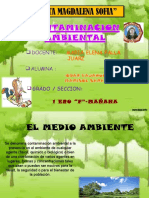 contaminacionambiental-131125071608-phpapp01