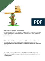 REGIONES NATURALES DECOLOMBIA.docx