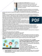 ALCANCE DE UN PROYECTO.docx