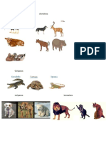 animales domesticos, silvestres, oviparos, viviparos, terrestres, acuaticos, carnivoros, herbivoros, omnivoros.docx