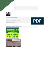 mar del plata urgencias veterinarias