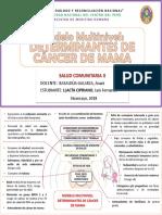 Mod multinivel CANCER DE MAMA