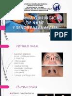 Anatomia Quirúrgica