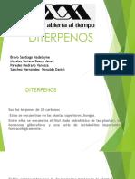282064578-Diterpenos.pdf