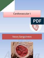 Amauta - Histología - Cardiovascular II - Betiana