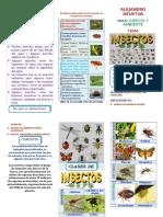 Triptico Los Insectos