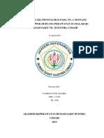 SAP CAMELIA 2.docx