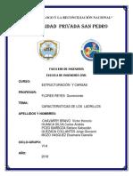 LADRILLOS.docx