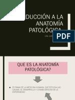 1. Introducción a La Anatomía Patológica..