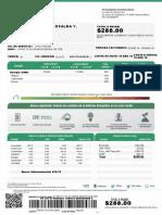 277171000281.pdf