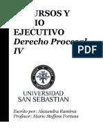 RECURSOS Y JUICIO EJECUTIVO.pdf