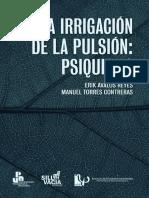 La Irrigación de la Pulsión