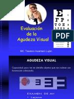 Agudeza visual (1)  okokok.pdf