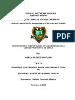 T16891 FLORES MONTAÑO, AMELIA   TESIS.pdf