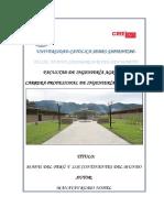 MAPAS DE LOS DEPARTAMENTOS DEL PERÚ