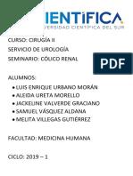 SEMINARIO Colico Renal