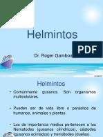 5. Helmintos