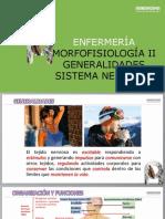 09 Morfofisiologia II Sistema Nervioso central y periferico abril 27 2019 nueva.docx
