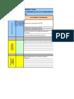 Formato Plan Accion Cronograma 1era Parte