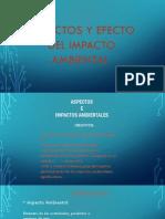 Aspectos y Efecto Del Impacto Ambintal Definicion