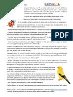 mariquita-catarina.pdf
