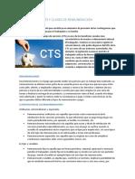 CTS Y CLASES DE REMUNERACION.docx