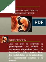 fecundacion y desarrollo embrionario 2º MEDIO .ppt