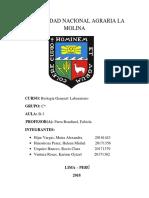 cuestionario 7 bio.docx