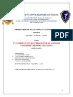 CADMIO-INFORME g.docx