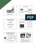 Microbiota_Normal.pdf
