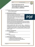 LECHES- Practica-de-Laboratorio-N2.docx