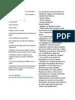 Características de  los ambientes aeroterrestres.docx