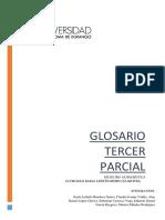 glosario 3 parcial.docx