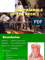 Anterior Triangle of the Neck