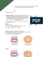 Induccion_magnetica_SOL.pdf